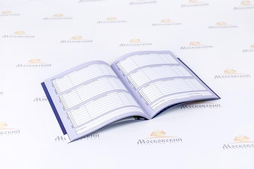 Разворот напечатанного дневника